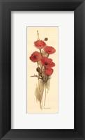 Framed Crimson Poppy