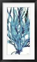 Framed Soft Seagrass in Blue 2
