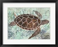 Framed Sea Turtle Collage 1