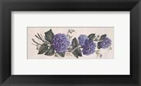Framed Purple Passion II