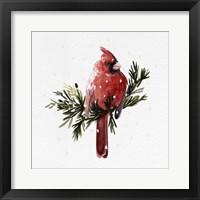 Framed Cardinal with Snow I