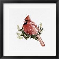Framed Cardinal with Snow II