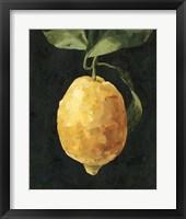 Framed Dark Lemon I