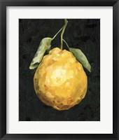 Framed Dark Lemon II