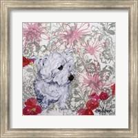 Framed Playful Pup III