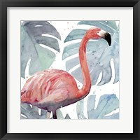 Framed Flamingo Splash I