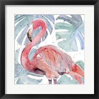 Framed Flamingo Splash II
