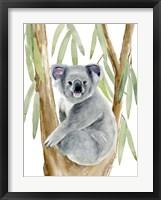 Framed Woodland Koala II