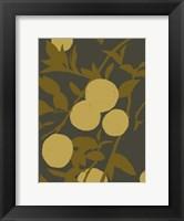 Framed Golden Satsuma I