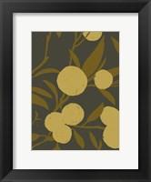 Framed Golden Satsuma II