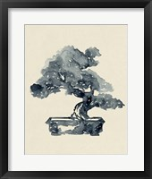Framed Indigo Bonsai II