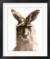 Framed Kangaroo Portrait II