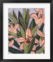 Framed Island Lily I