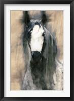 Framed Blended Horse II