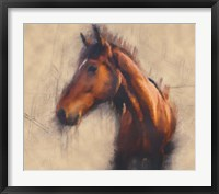 Framed Blended Horse III
