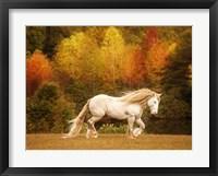Framed Golden Lit Horse VI