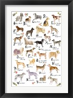 Framed Dog Alphabet
