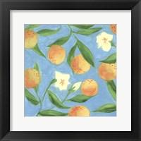 Framed Sweet Tangerine I