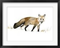 Framed Winter Fox I