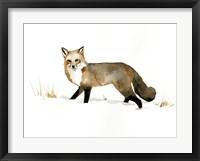 Framed Winter Fox II