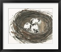 Framed Nesting Eggs I