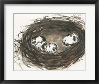 Framed Nesting Eggs II
