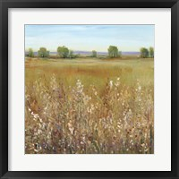 Framed Abundance of Wildflowers I