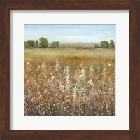 Framed Abundance of Wildflowers II