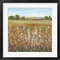 Framed Abundance of Wildflowers II