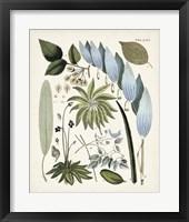 Framed Fanciful Ferns IX