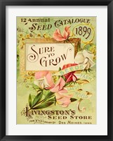Framed Antique Seed Packets VIII