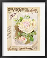 Framed Antique Seed Packets IX