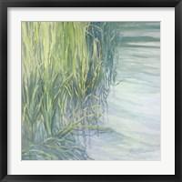 Framed Sweetgrass
