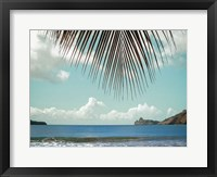 Framed Palm Seashore