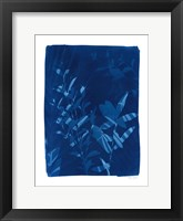 Framed Cyanotype Tropical VI