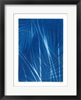 Framed Cyanotype Tropical II
