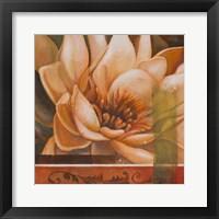 Framed Flor de Loto II