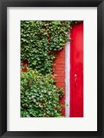 Framed Red Garden Door