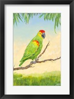 Framed Tropic Bird in Paradise II