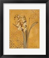 Framed Hyacinth I