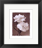 Framed Carnations