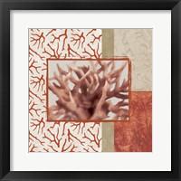 Framed Coral Branch II