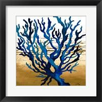 Framed Coastal Blue I