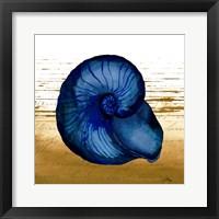 Framed Coastal Blue IV