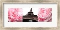 Framed Pink Roses Eiffel Tower