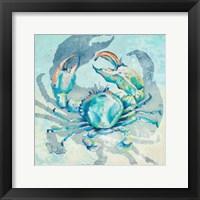 Framed Surf Side Crab