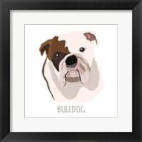 Framed Bull Dog