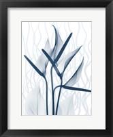 Framed Blue Dawn 2