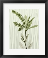 Framed Radiant Greens 1