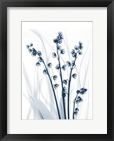 Radiant Blues 1 Framed Print